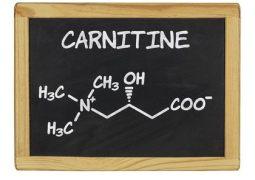 L-Carnitin – Wirkung, Nebenwirkungen, Einnahme