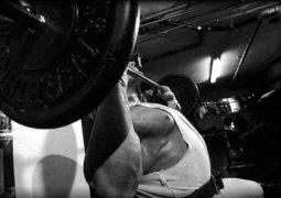 Schultertraining – Masseaufbau für die Schultermuskulatur