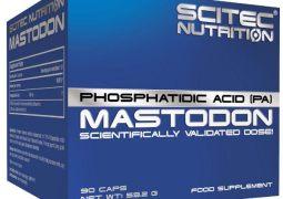 Scitec Mastodon – Muskelaufbau und Kraftzuwachs