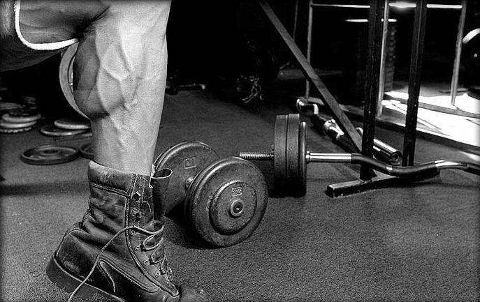 Profi Trainingsplan Masse und Kraft