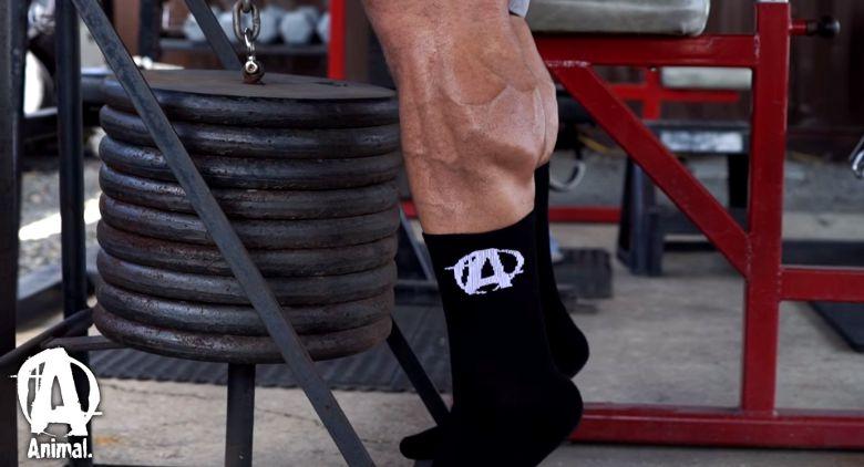 Universal Nutrition Bodybuilding Bekleidung