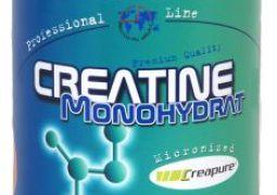 Creatin Dosierung und Einnahme Zyklen