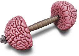 Gehirntraining durch Visualisierung
