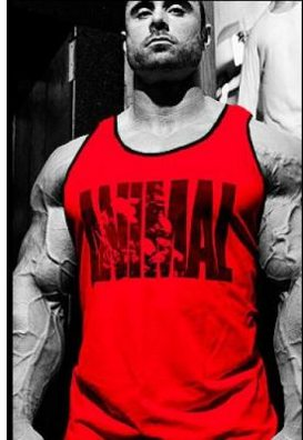 Bodybuilding Tank Top Wrath