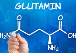 L-Glutamin – Einnahme, Wirkung, Dosierung