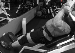 Off-Season Quadrizeps Training mit IFBB Pro John Jewett